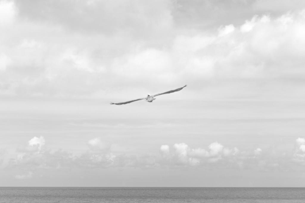 seinsart | Tuncay Gary Lyrik