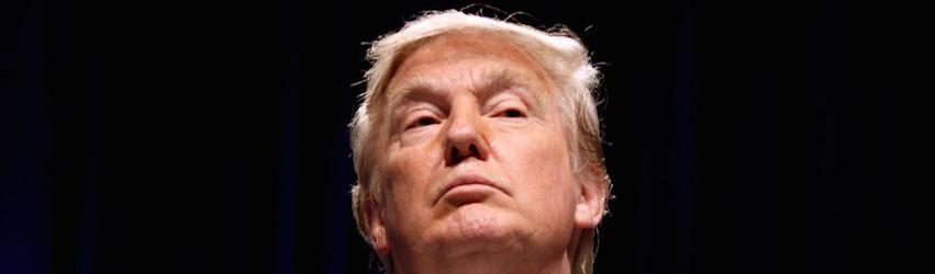 Donald Trump | seinsart